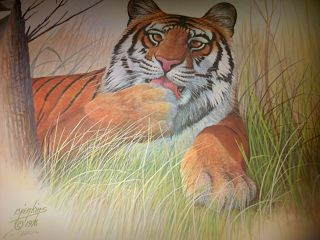 Realism  artwork Bangal Tiger by Ron Jenkins